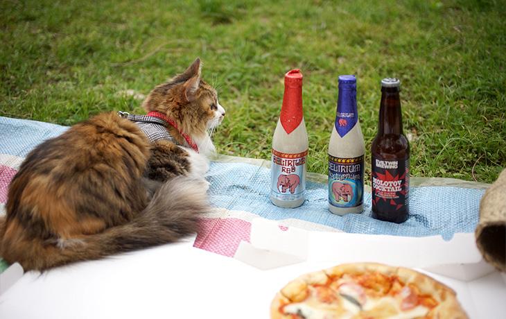 【猫デートvol.4】 公園でピクニックデート